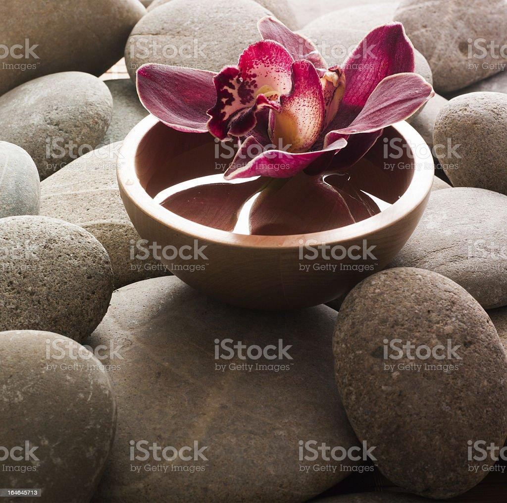 ayurveda symbol royalty-free stock photo