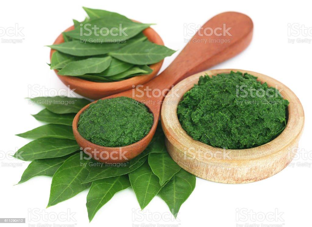 Ayurvedic henna leaves mashed and whole stock photo