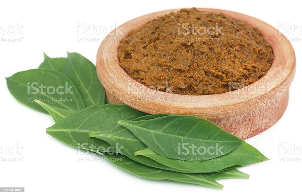 Ayurvedic henna leaves with paste stock photo
