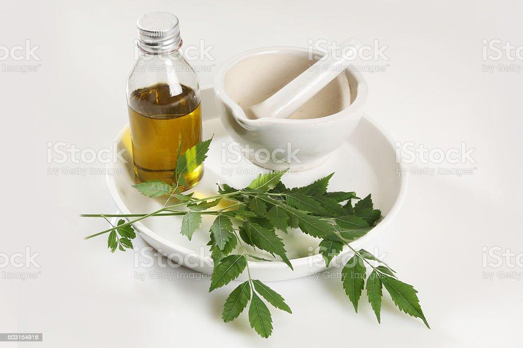 Ayurvedic Herbs Neem with Oil stock photo