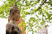 Ayutthaya, Thailand - March 05, 2016 - Ancient Buddha statue