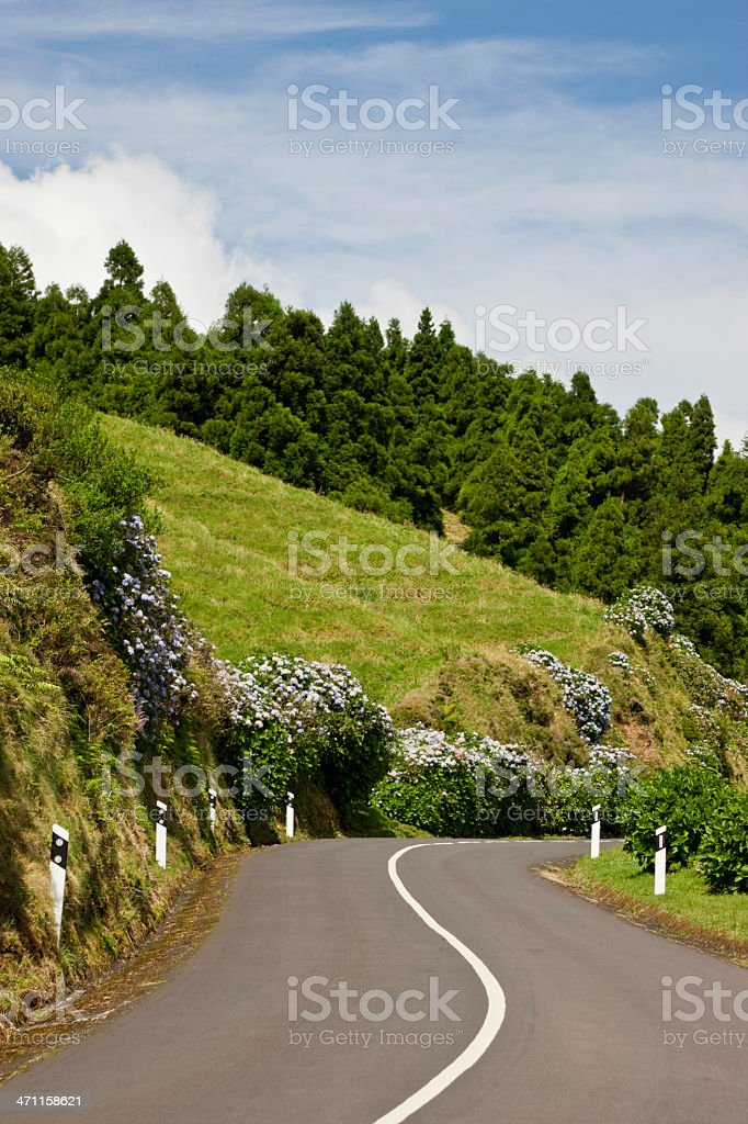 Azores Winding Road royalty-free stock photo
