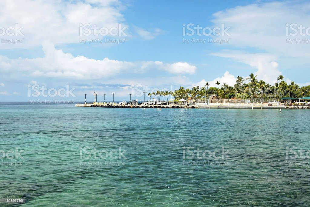 Azure ocean and palm trees on Hawaii royalty-free stock photo