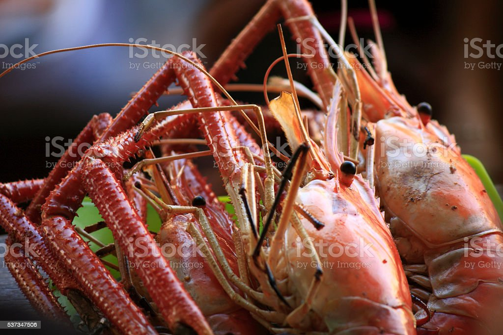 Babecue Shrimp stock photo