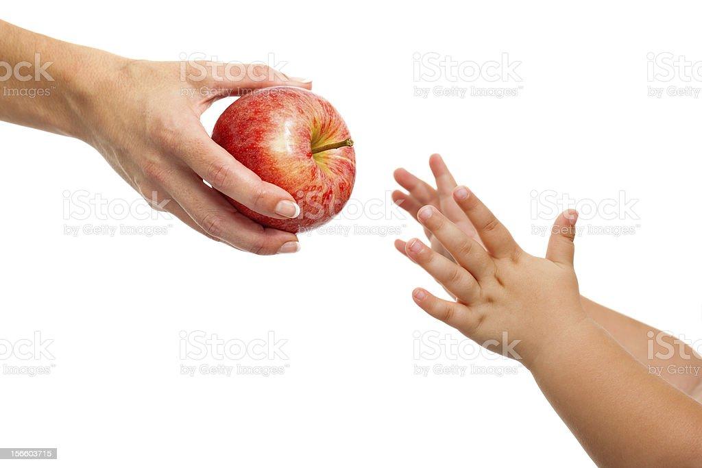 Bébés main atteindre les apple. photo libre de droits