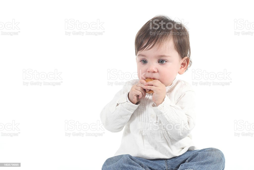 Baby absorbed eating a cookie royalty-free stock photo