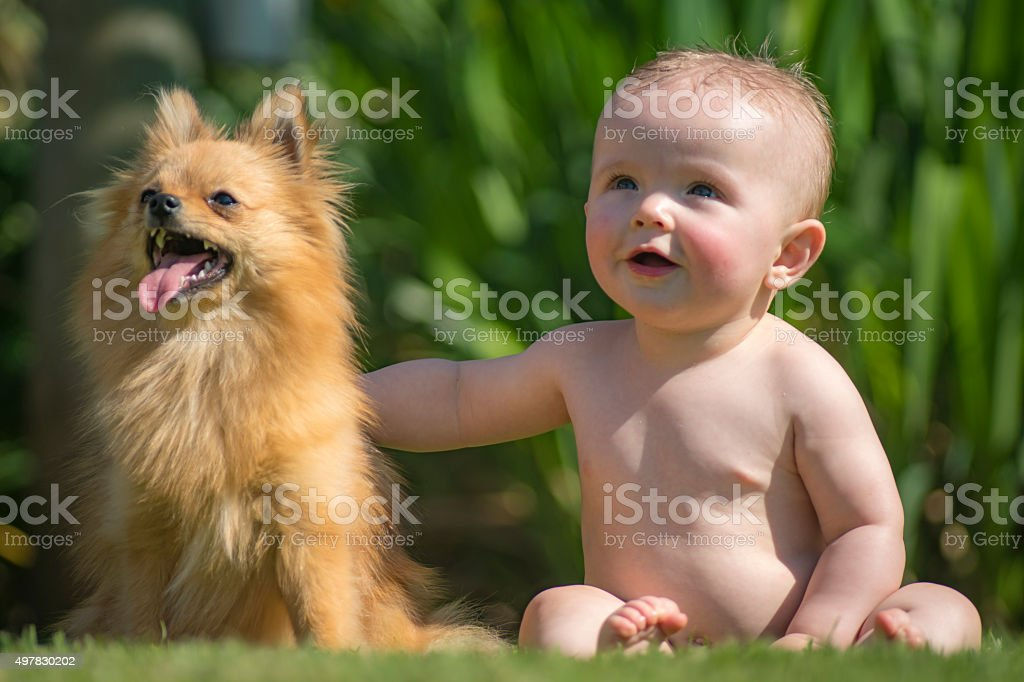 Baby and best buddy. stock photo