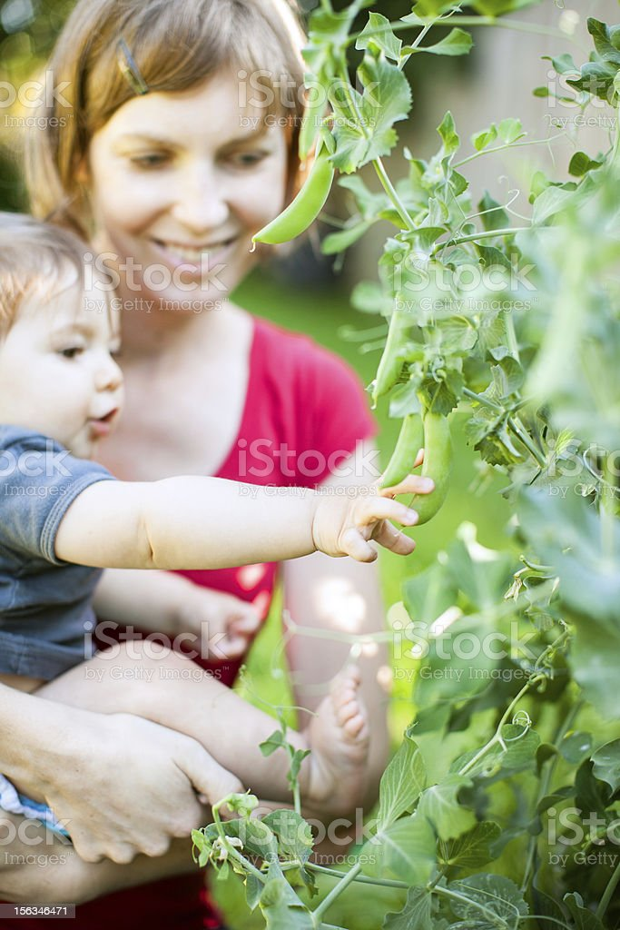 Baby and Mother in Garden royalty-free stock photo