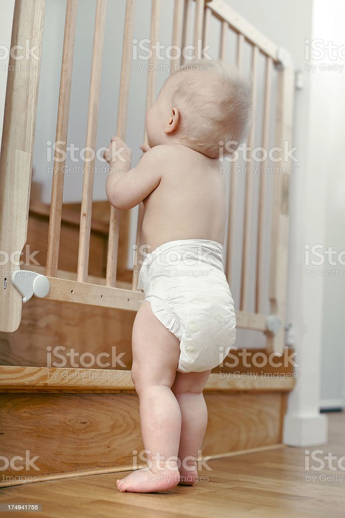 Baby and the stair gate stock photo