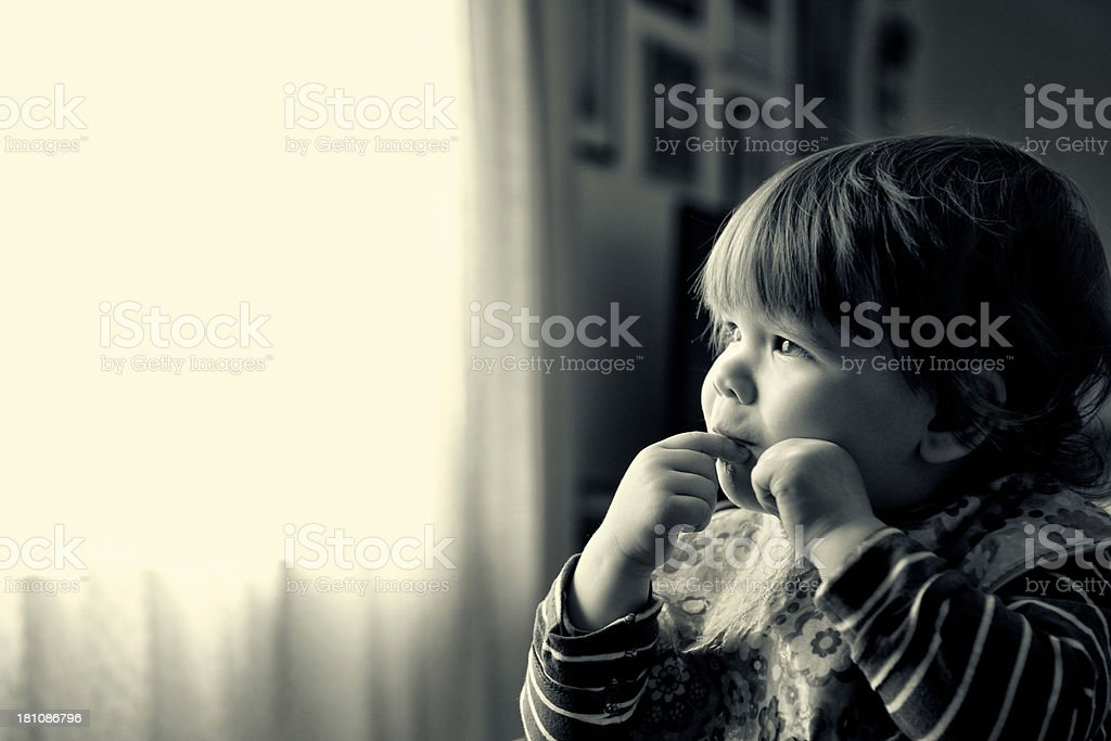 Baby at window royalty-free stock photo