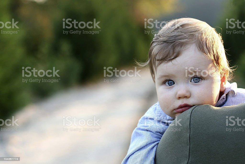 baby blue royalty-free stock photo