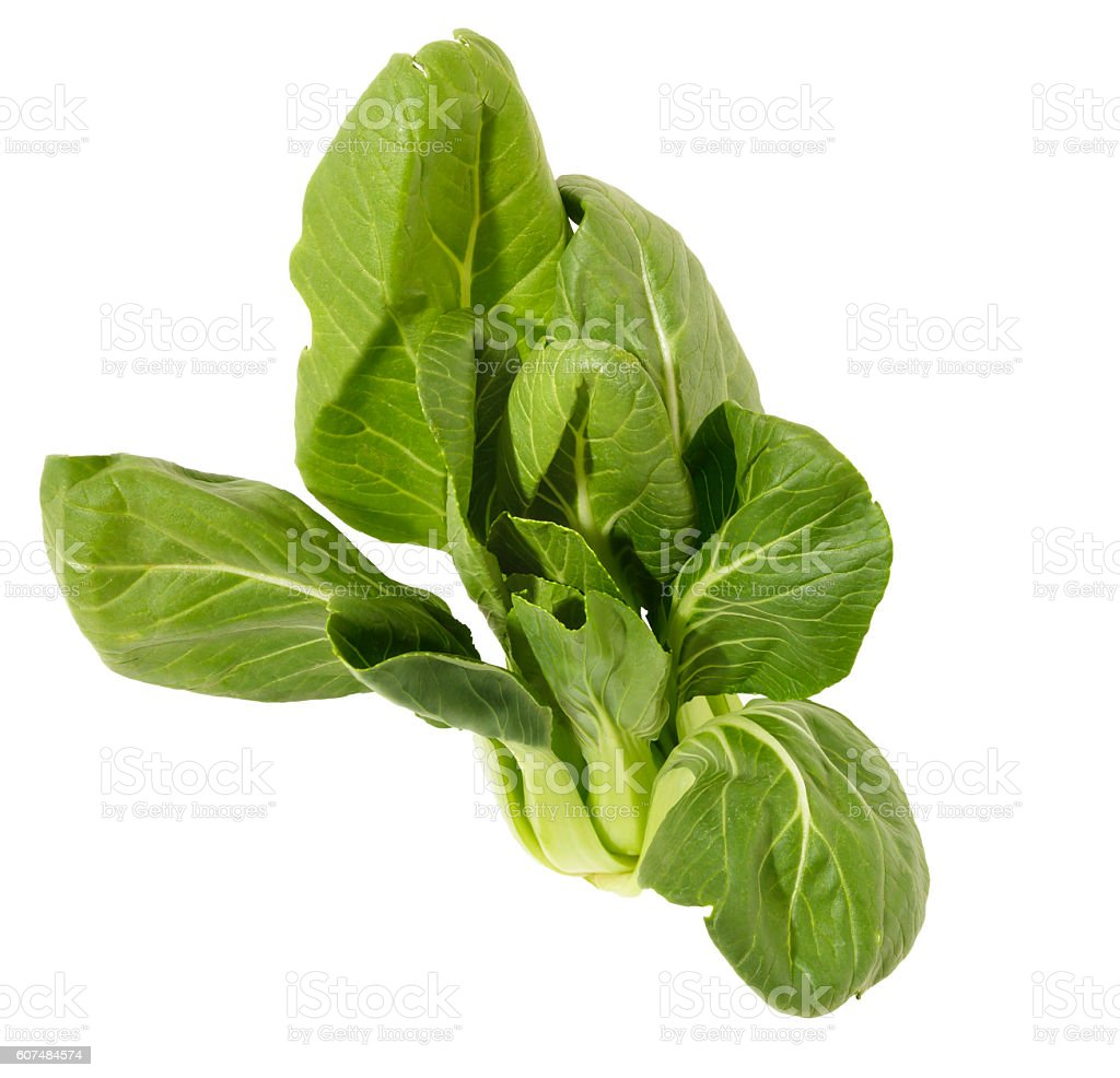 Baby Bok Choy Leaves stock photo
