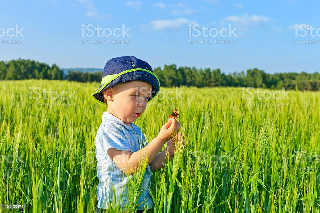 Baby boy and butterfly royalty-free stock photo