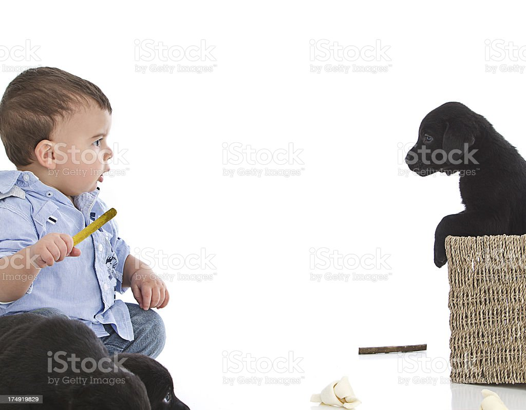 Baby boy and puppy royalty-free stock photo