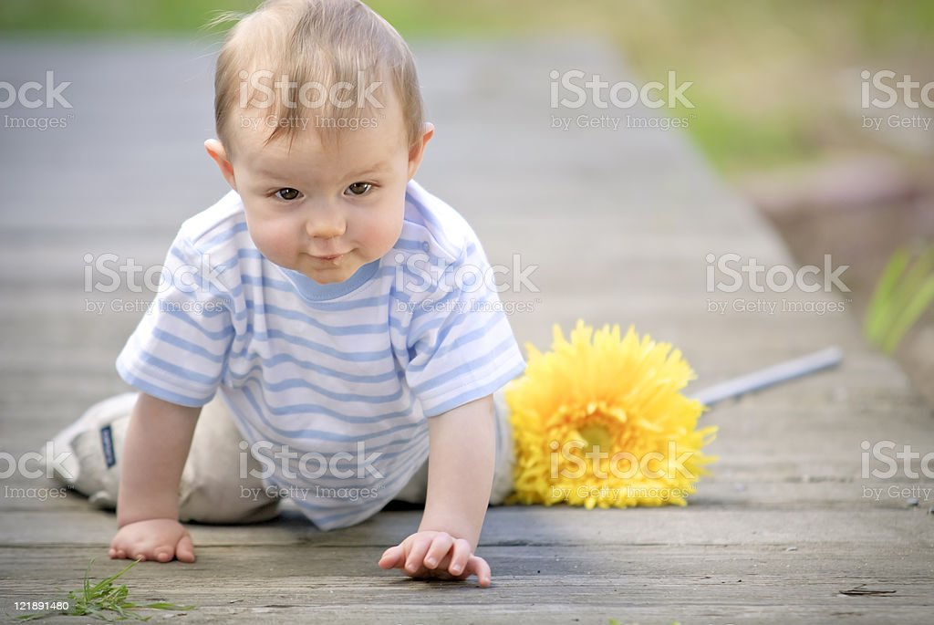 Baby Boy Crawling Outside royalty-free stock photo