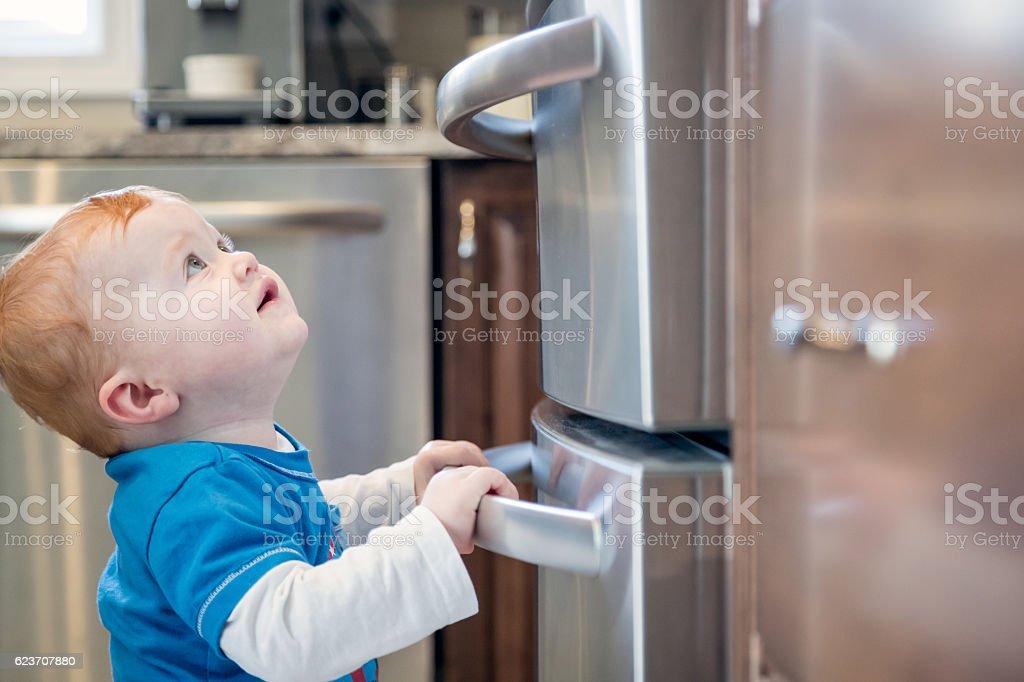 Baby Boy Grabbing Refrigerator Handle in Kitchen stock photo