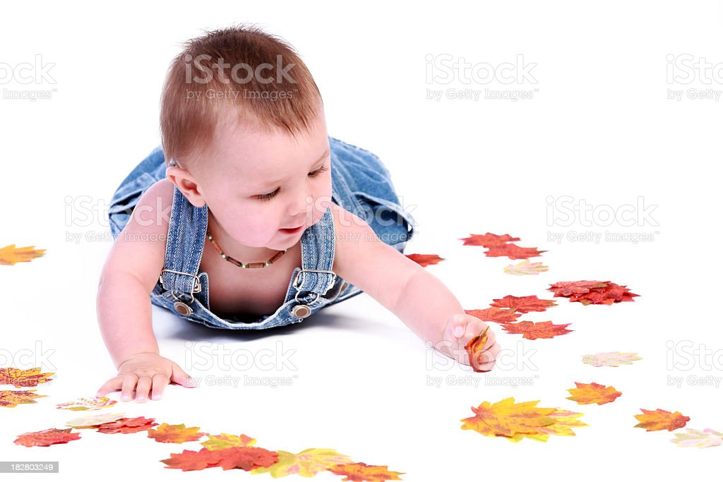 Baby Boy Isolated on White Playing with Autumn Leaves royalty-free stock photo