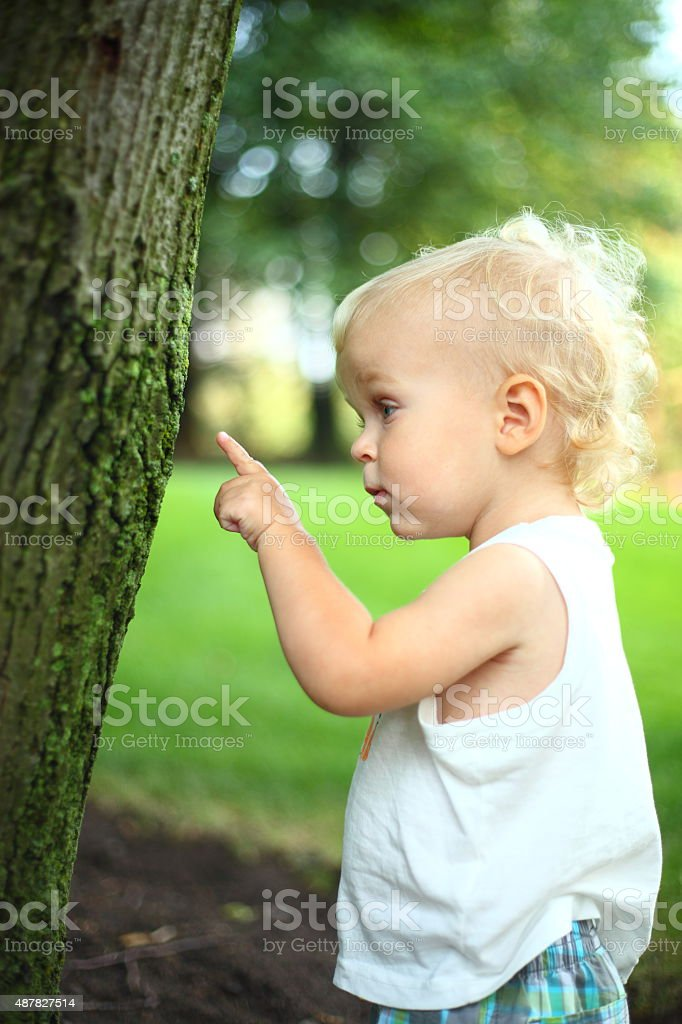 Baby boy pointing on a tree stock photo