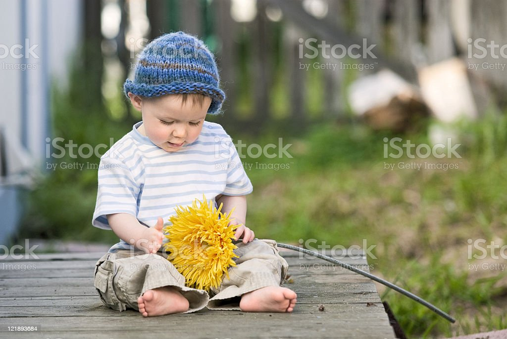 Baby Boy with a Flower stock photo