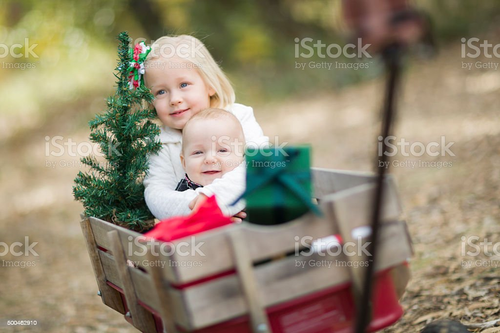 Baby Brother and Sister Pulled in Wagon with Christmas Tree stock photo