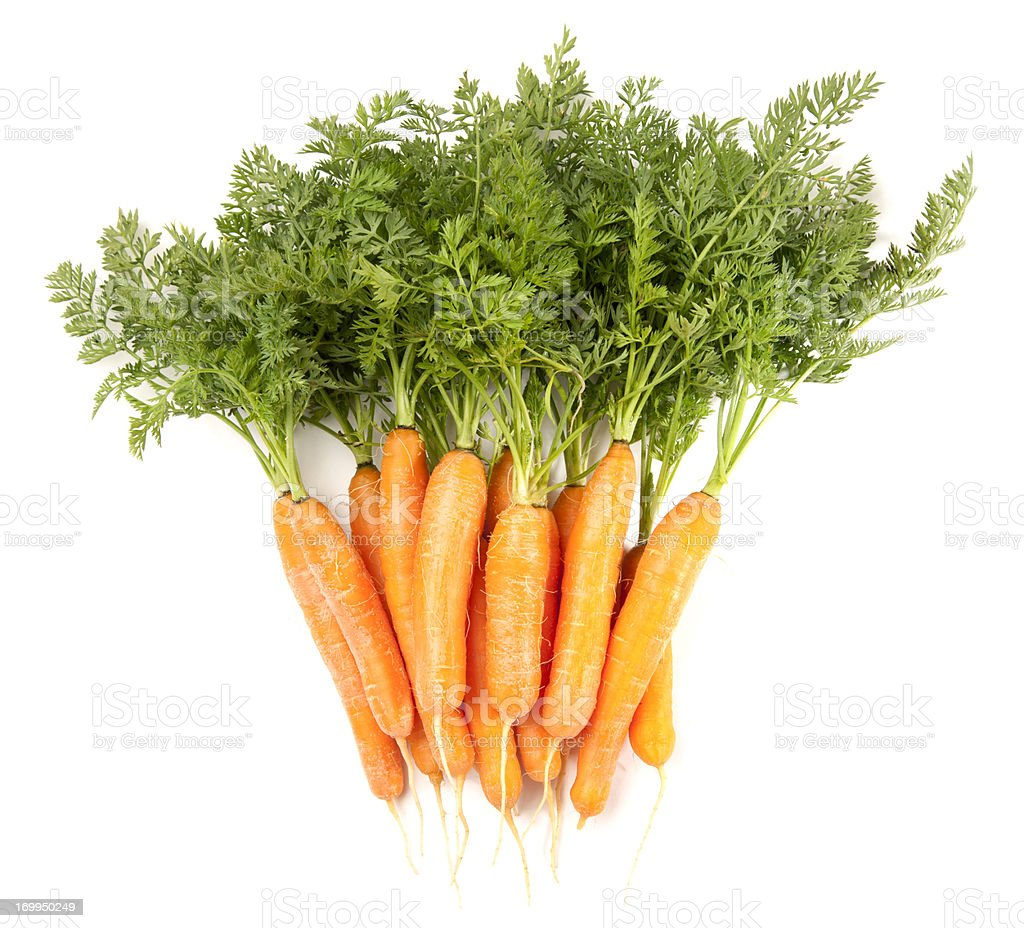 Baby Carrots Bunch Isolated on White stock photo