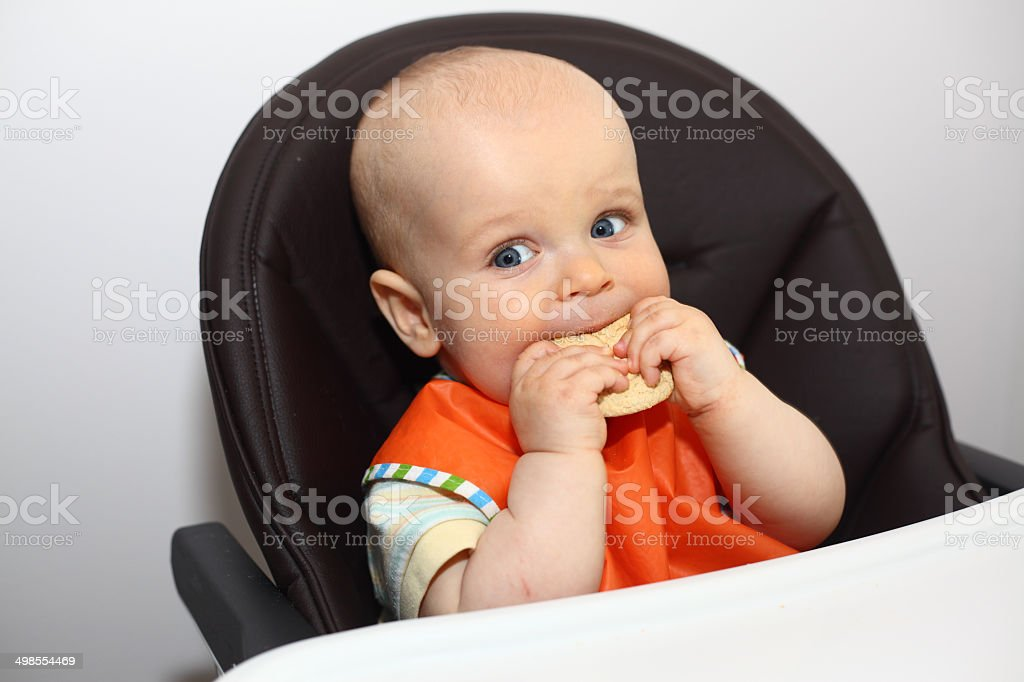 Baby eating a cookie stock photo