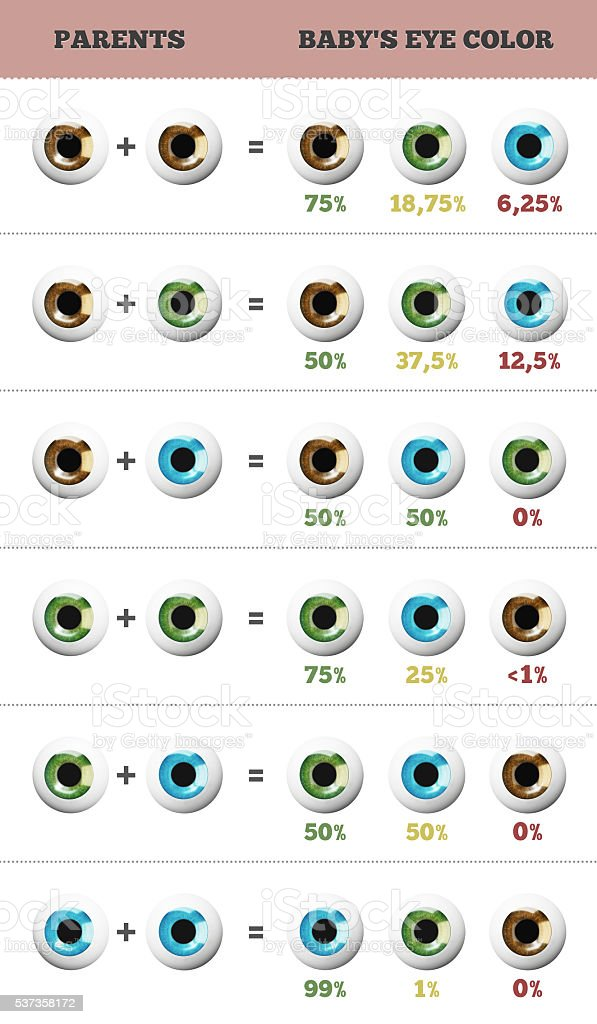 Baby eye color predictor. stock photo