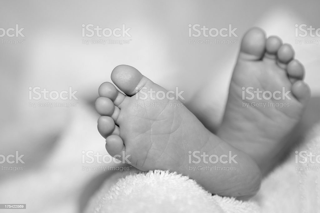 Baby Feet Close-up, monochrome stock photo
