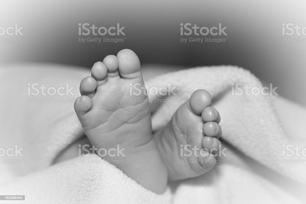 Baby Feet in Black and White - Close-up (XL) stock photo
