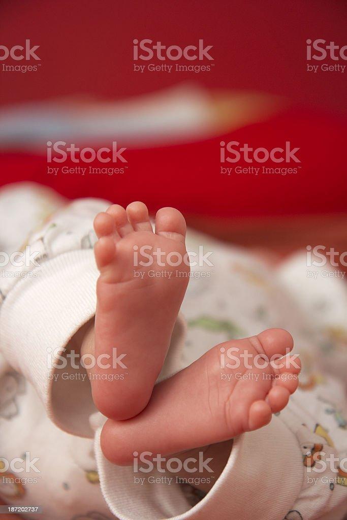 Baby feet royalty-free stock photo