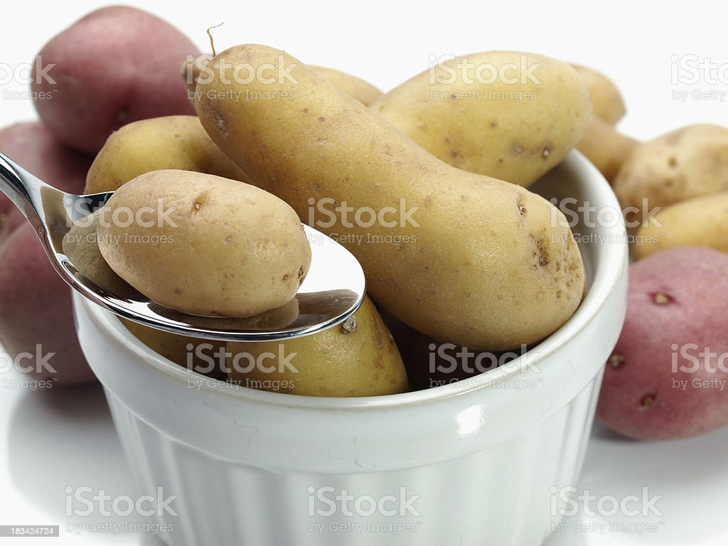 Baby Fingerling Potato on Spoon royalty-free stock photo