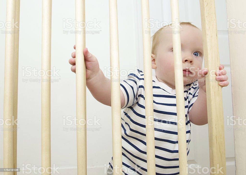 Baby Gate stock photo