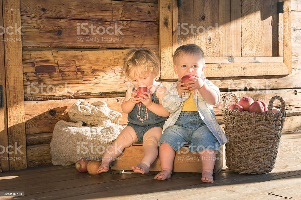 Baby girl and boy sitting and eating apples stock photo