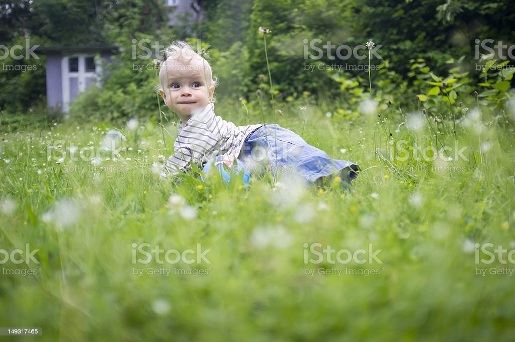 Baby girl crawling in tall grass stock photo