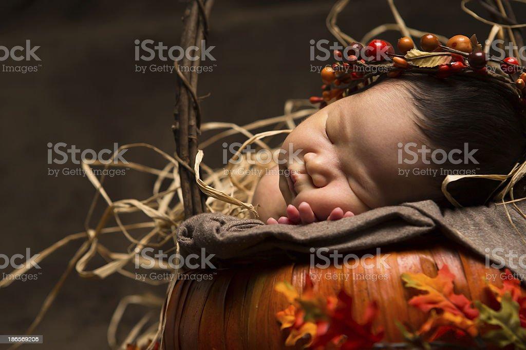 Baby girl newborn laying in pumpkin basket royalty-free stock photo