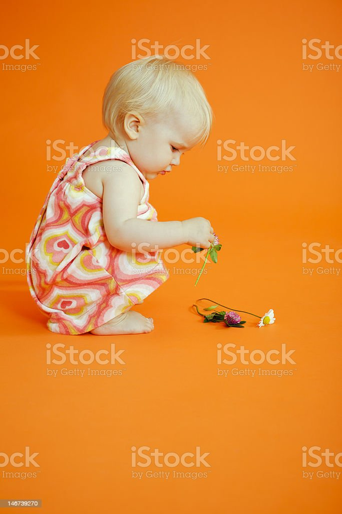 Baby girl picking up flowers royalty-free stock photo