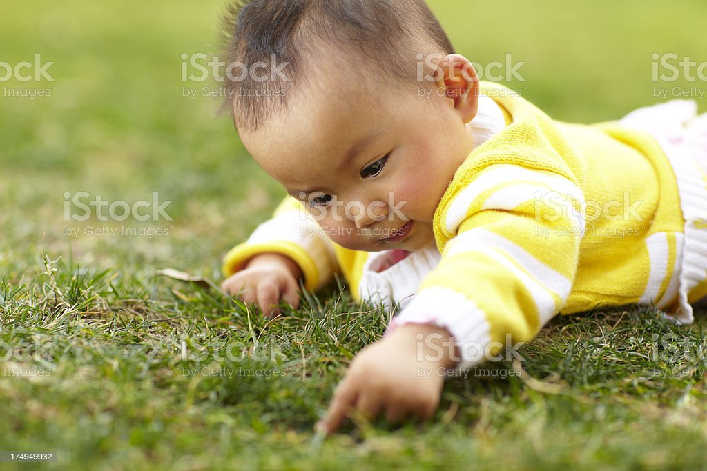 baby girl playing outdoor royalty-free stock photo