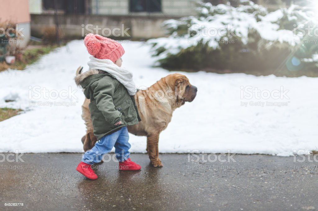 Baby girl talking a walk with her dog outside stock photo