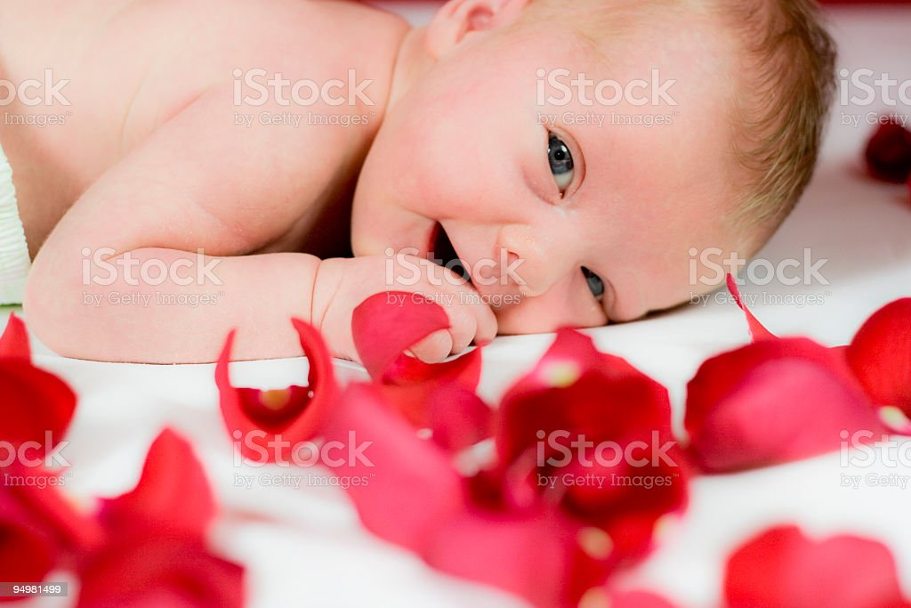 Baby girl with red roses stock photo