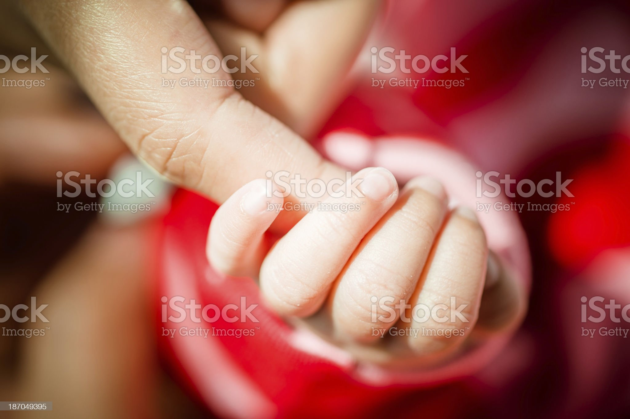 Baby Holding Finger of Parent royalty-free stock photo