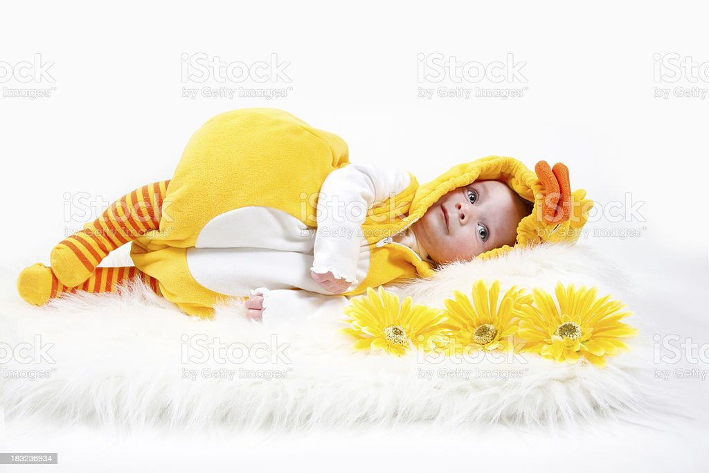 Baby in Duck costume stock photo