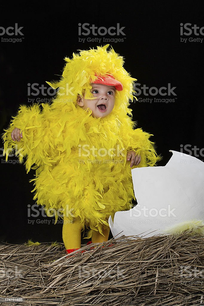 Baby in little chicken costume stock photo