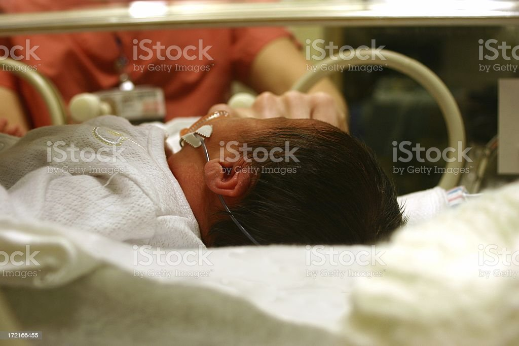 Baby in NICU Incubator royalty-free stock photo