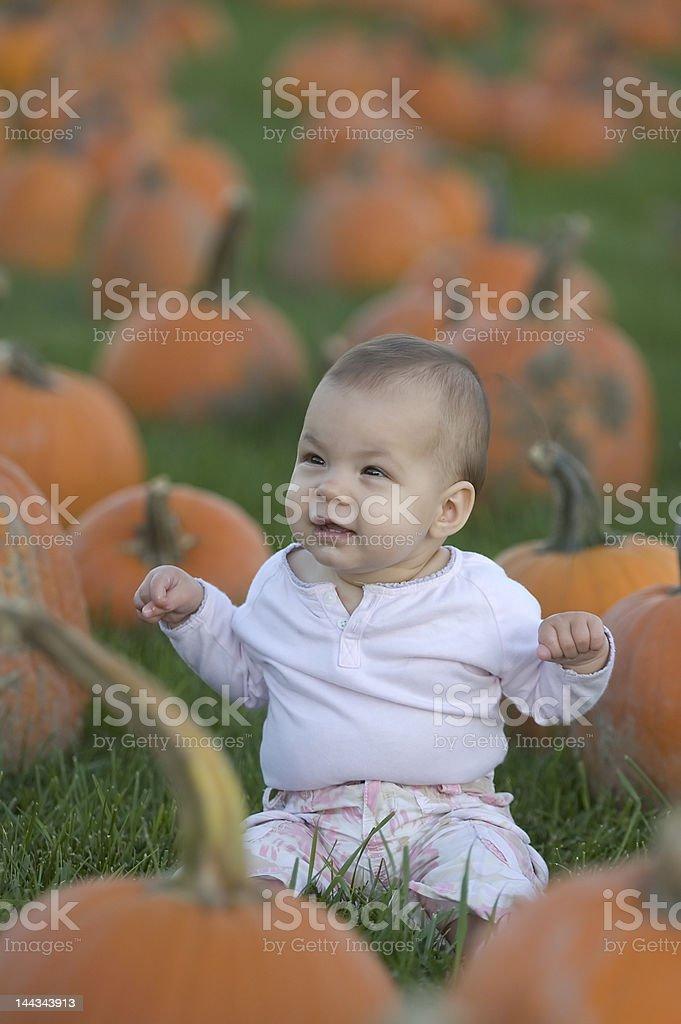 Baby in pumpkin field royalty-free stock photo