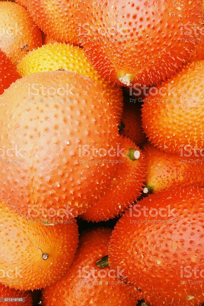 Baby Jackfruit in the market stock photo