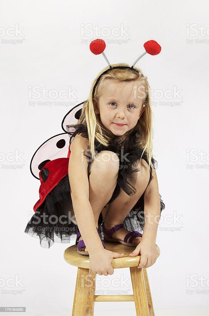 Baby Lady Bug Costume stock photo