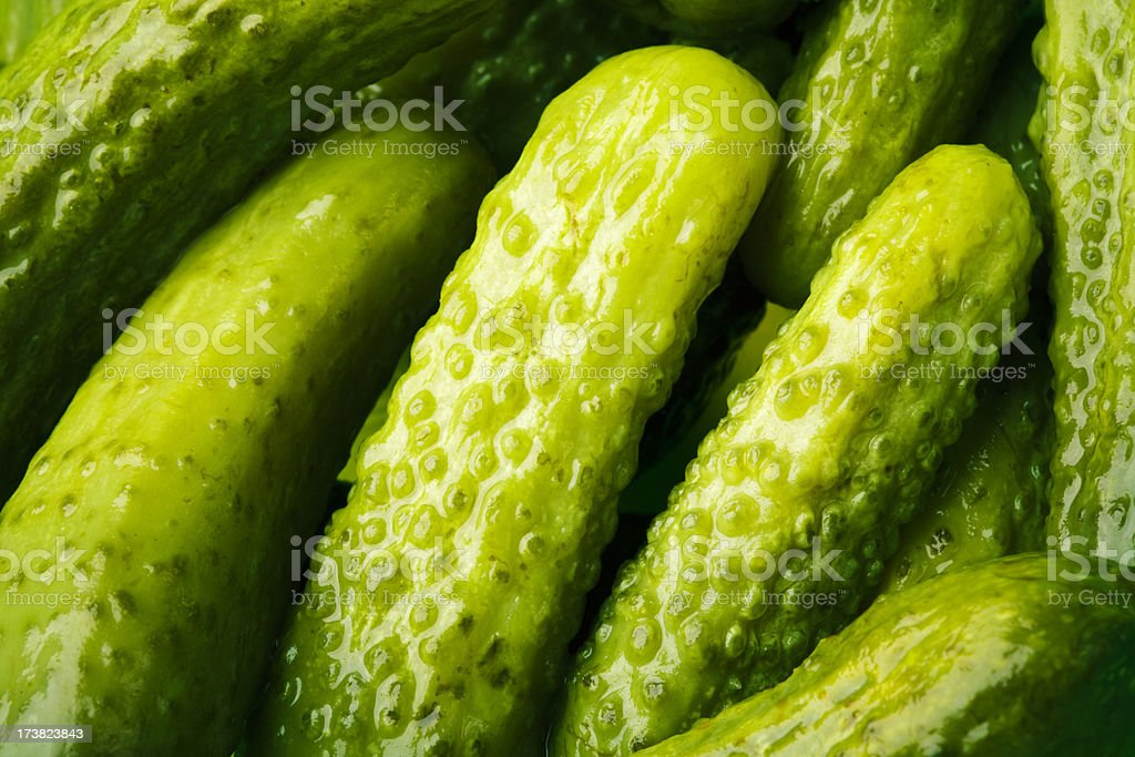 Baby Pickles royalty-free stock photo