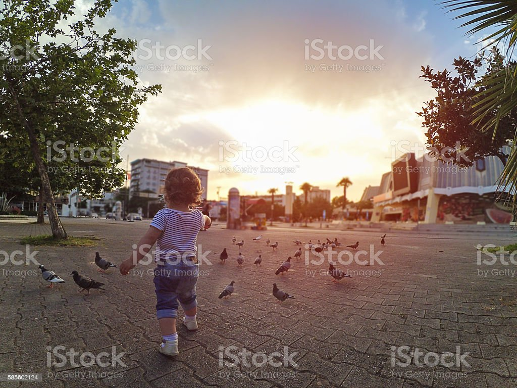 Baby playing with pigeons in Bar Montenegro stock photo