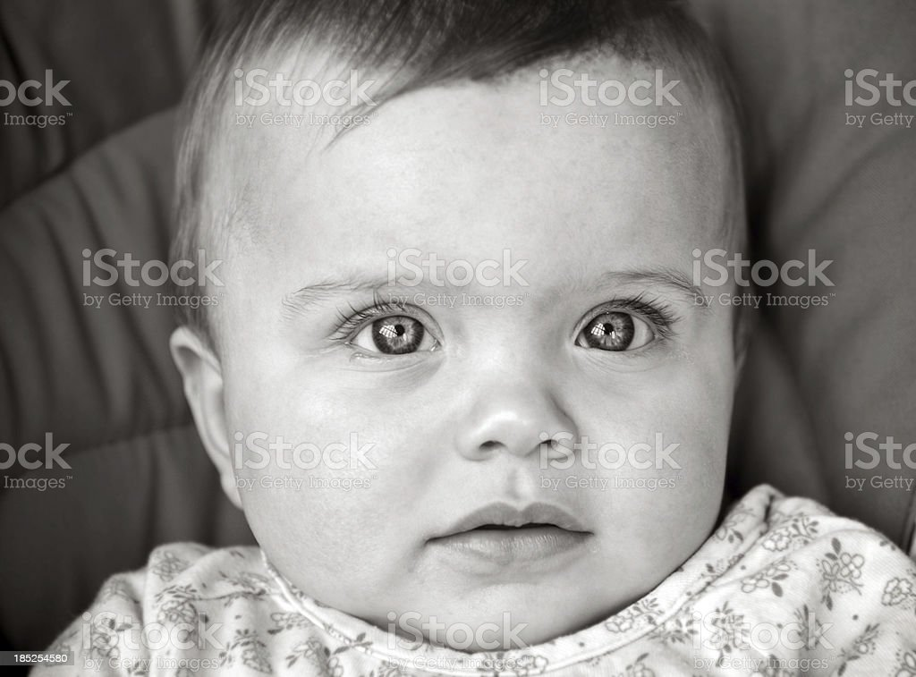 Baby Portrait royalty-free stock photo