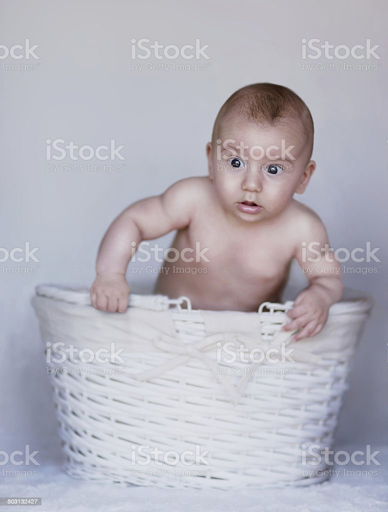 Baby Portrait stock photo